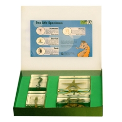 Sea Life Specimen Set,4pcs,with instruction